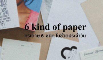 กระดาษ 6 ชนิด ในชีวิตประจำวัน